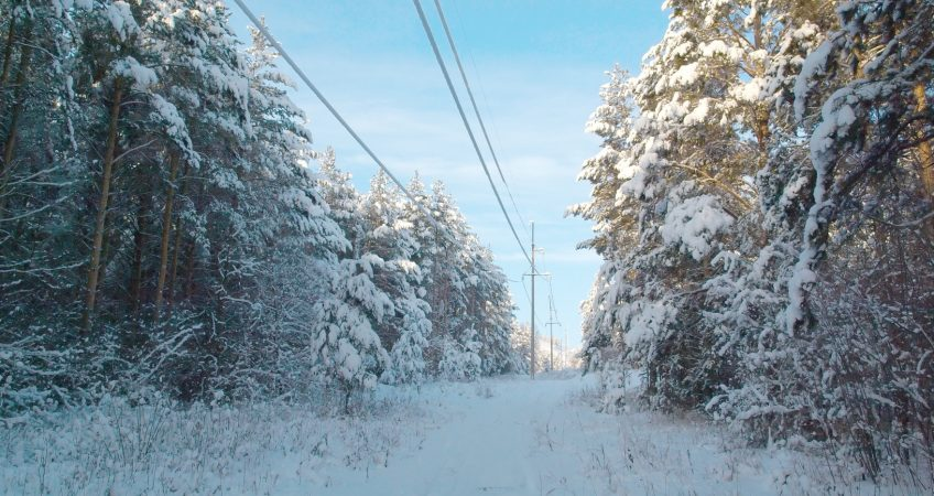 Power line in the winter forest. Trees under snow.